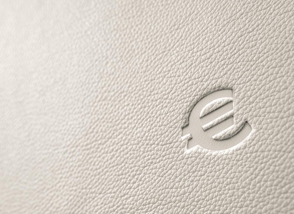 Immagine: Rendering 3D marchio Euro impresso su pelle. Grafica 3D realizzata dallo studio grafico e di comunicazione di vicino Mestre Holbein & Partners