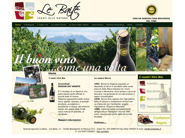 Progettazzione siti internet a Treviso