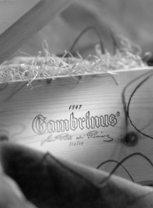 Cliente: Parco Gambrinus, immagine prodotto istituzionale.