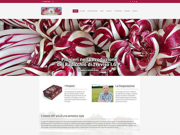 Sito web realizzato dalla Holbein & Partners per l'Azienda Agricola La Trevisana del Sile