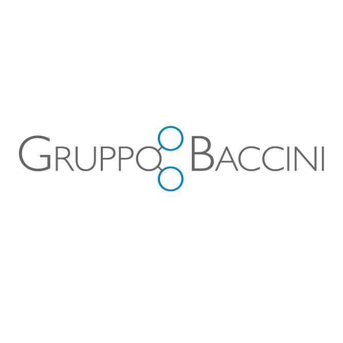 Logo Gruppo Baccini